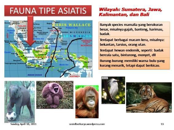 Slide13 unsur fisik wilayah indonesia